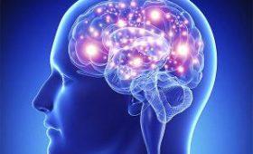 Мозг помогает человеку лечить слепоту