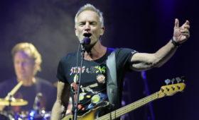 Дэвид Линч устроит онлайн-концерт со Стингом, Кэти Перри и Хью Джекманом