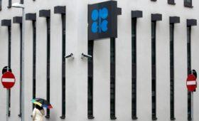 Песков назвал разногласия в ОПЕК+ по нефти рабочей ситуацией