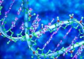 ДНК извлекла корень из 900